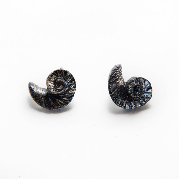 Oxidized Shell Earrings silver