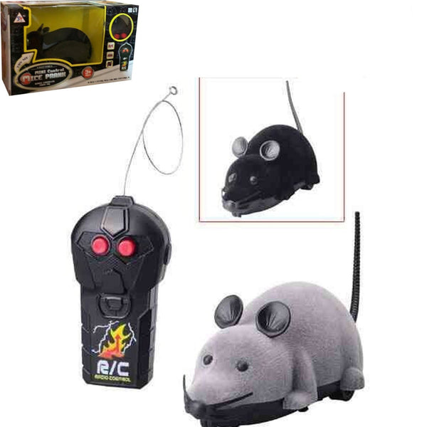 Remote Control Mouse For Kids Toy