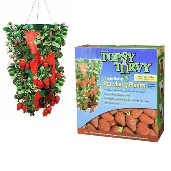 Hanging Topsy Turvy Vertical Strawberry Plant