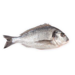 Fresh Sea Bream - each