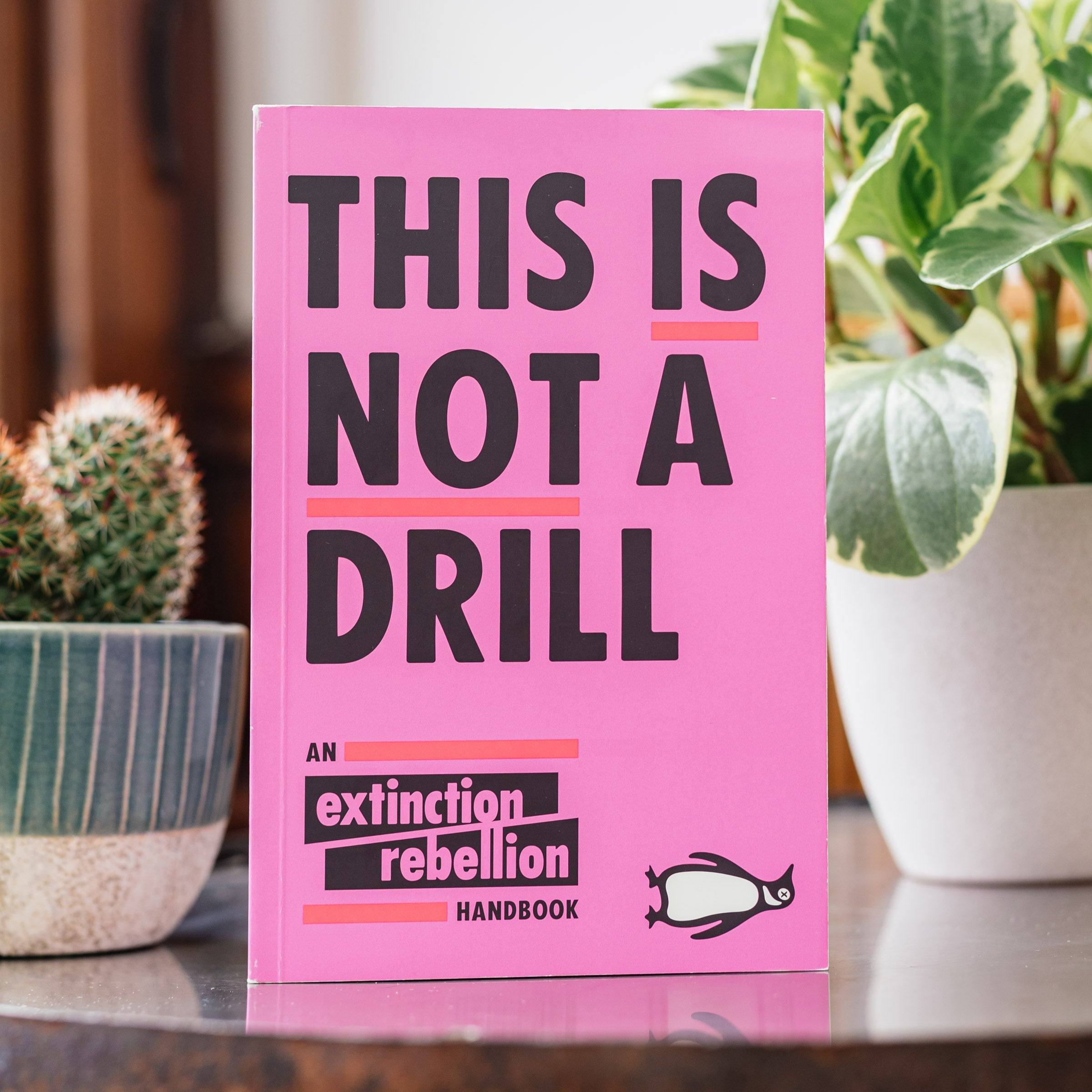 Greta Thunberg This is Not a Drill: An Extinction Rebellion Handbook — The Tetley Shop