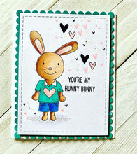 Load image into Gallery viewer, Hunny Bunny Kit