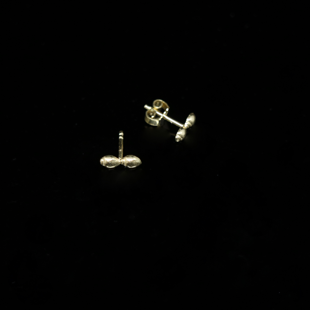 Conches Earrings - 2 Shells - Studs - Gold