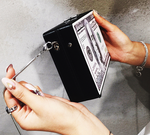 Hundred Dollar Bill Clutch