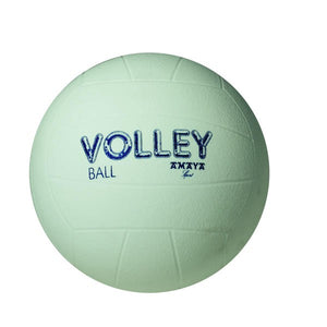 BALON VOLEY PVC 210 mm.
