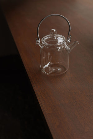 Hario Glass Teapot with Staineless Steel Handle