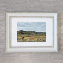 "Load image into Gallery viewer, ""Finding Joy"" - framed original oil painting on paper"