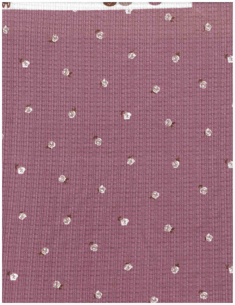KNT3359-Q00130 -MAUVE  POINTELLE, RIBBED, SOLID, YARN DYED KNIT