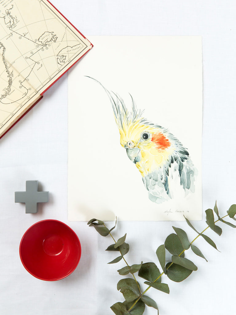 Stefan Gevers - Cockatiel - edition print