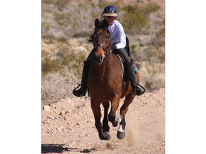 Woman galloping on her horse. She is wearing the Da Brim Rezzo helmet visor in tan.