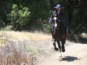 Horse galloping and completely in the air with rider wearing the Da Brim Equestrian Endurance helmet brim visor in black.