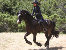 Load image into Gallery viewer, Woman and horse galloping while rider wears the Da Brim Equestrian Endurance helmet brim visor in black.