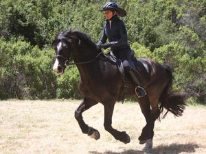 Woman and horse galloping while rider wears the Da Brim Equestrian Endurance helmet brim visor in black.