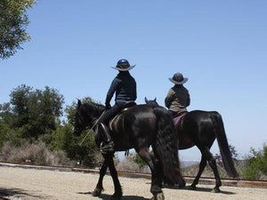Two riders out for a walk on their horses. Both are wearing Da Brim helmet brim visors.