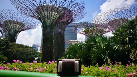MakakaOnTheRun Triple Slim Wallets beim Reisen Singapur Singapore Gardens by the bay