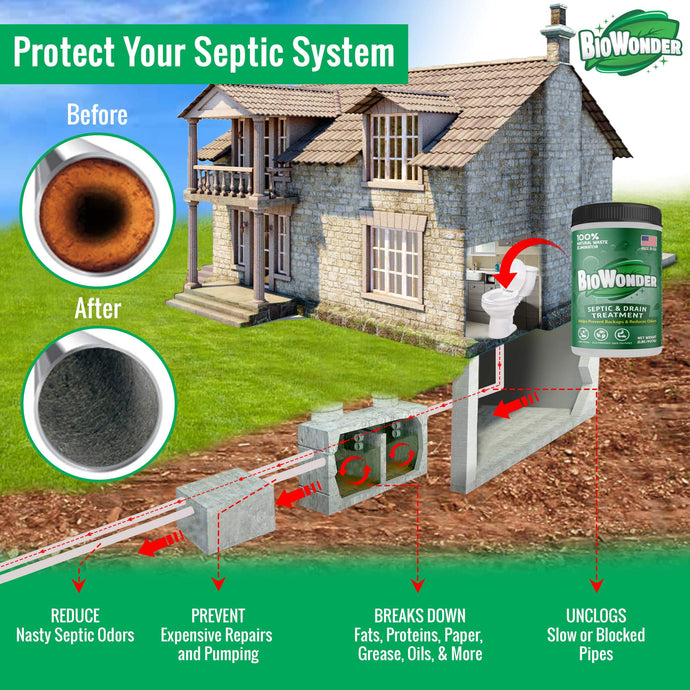 Septic System Care—What You Need to Know