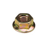 Champion M6 X 1.00 NUT (10MM AF)95PK