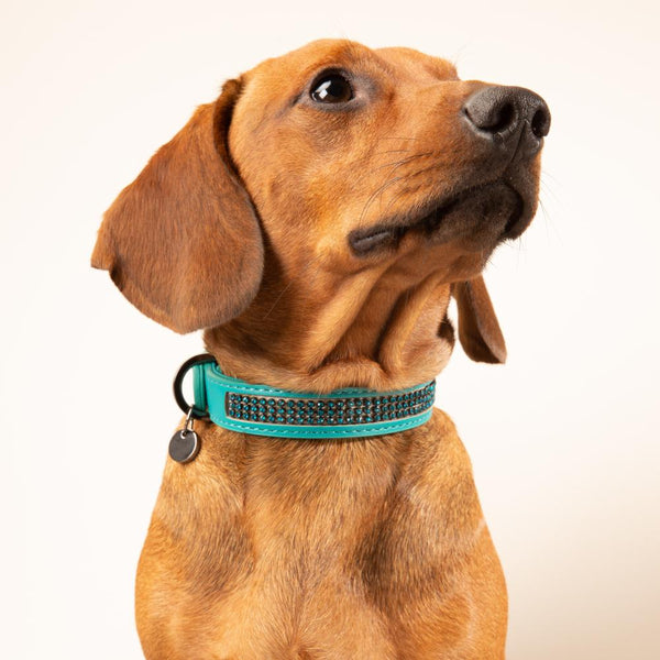 Boraal Halsband in Turquoise - Milk & Pepper