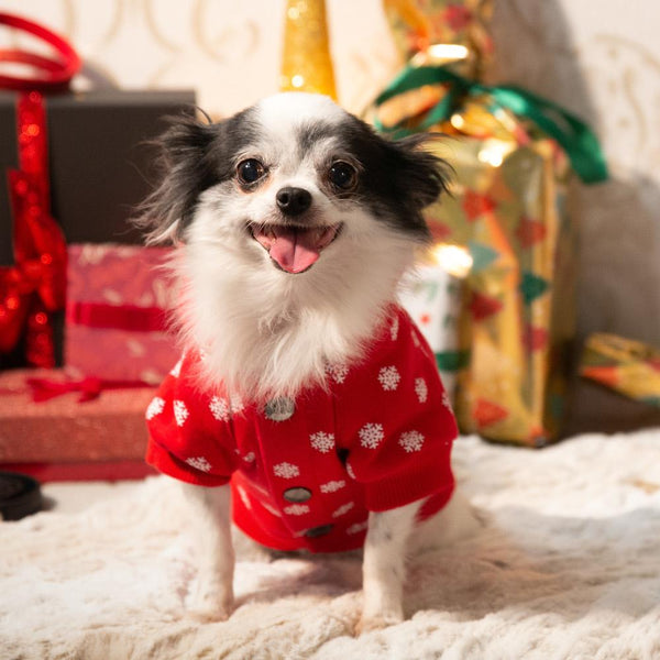 Chihuahua Christmas Sweater Flakey - Milk & Pepper