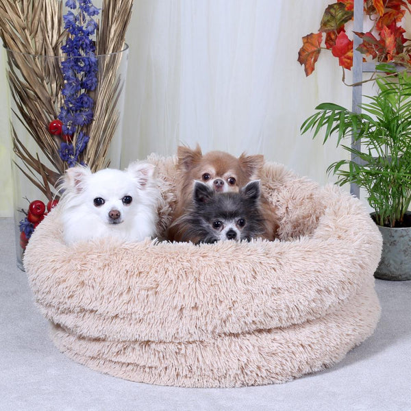 Classic Cosy Hondenmand in Beige - O Lala Pets