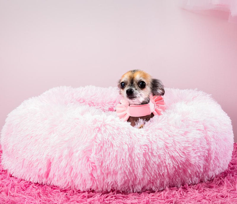 Donut in Pink - Susan Lanci Designs