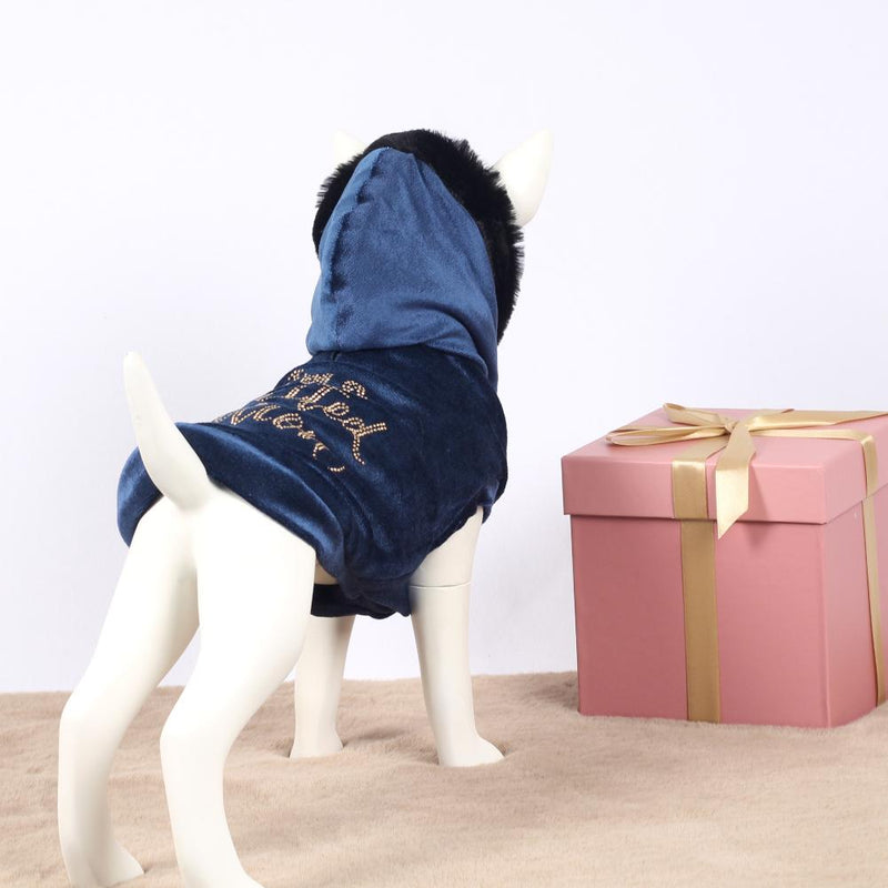 I Am A Limited Edition Sweater in Blauw - I Love My Dog