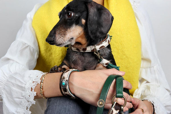 Ivy Halsband incl. gratis Ivy Vriendschap Armband - Dog With a Mission