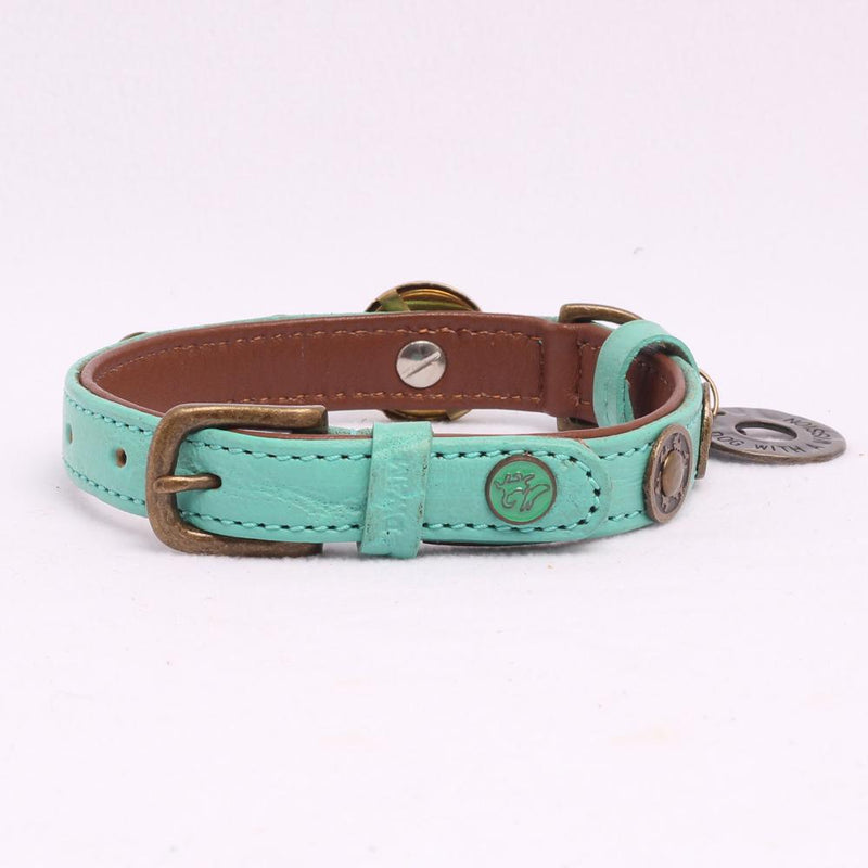 Rebel Halsband in Leer Turquoise - Dog With a Mission