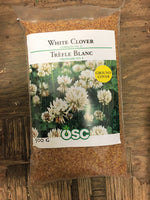 Load image into Gallery viewer, White Clover Seeds (500g)