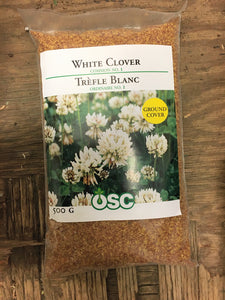 White Clover Seeds (500g)