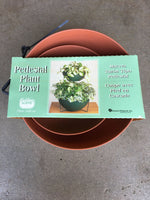 Load image into Gallery viewer, Pedestal Plant Bowl