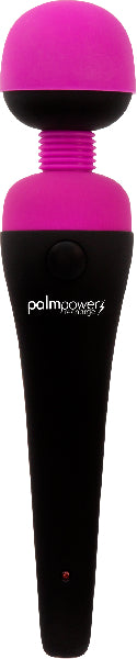 PalmPower Massage Wand Recharge Waterproof