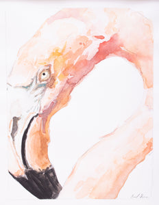Flamingo Portrait