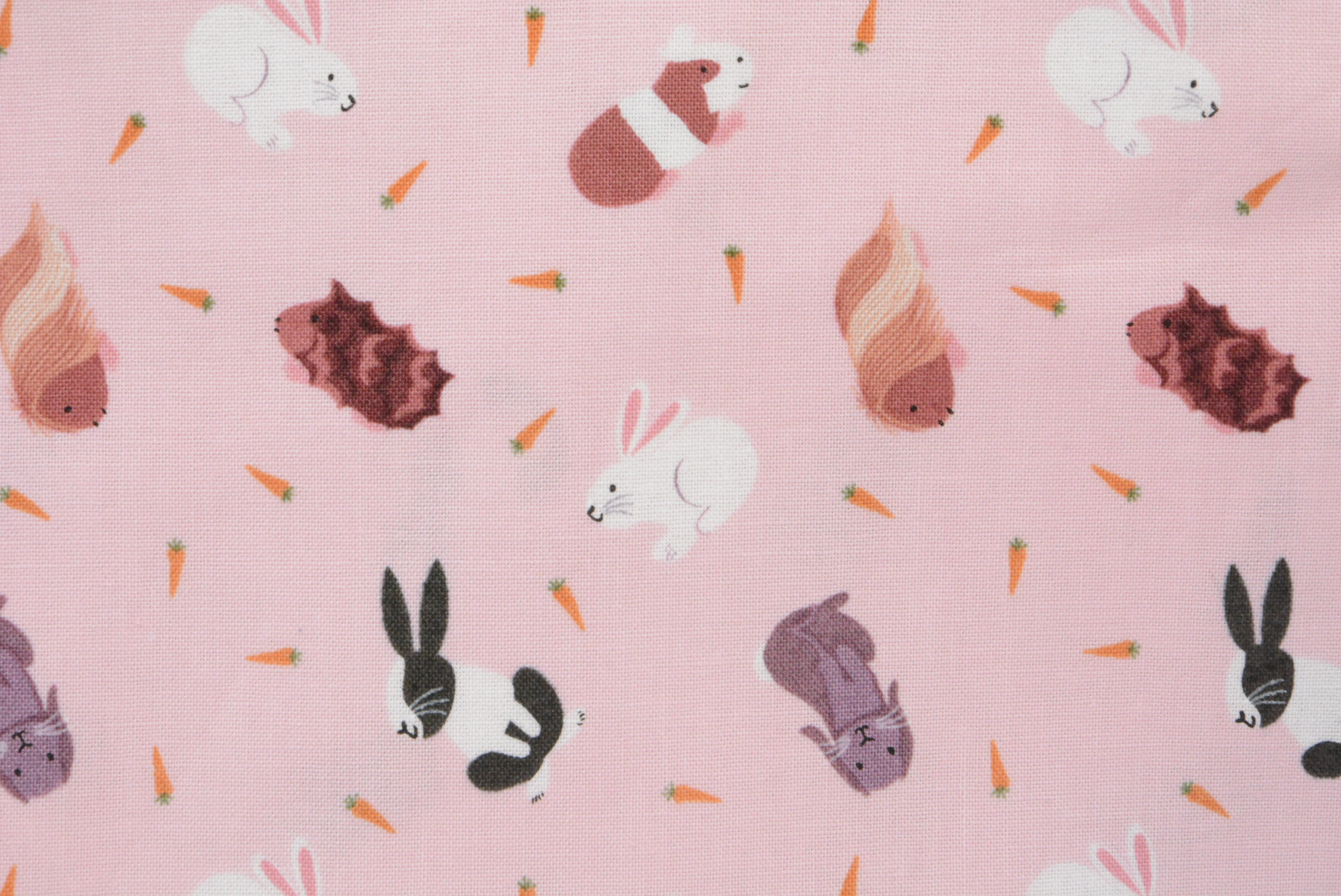 Assorted Bunny Rabbits - Pink