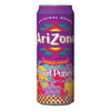 ARIZONA FRUIT PUNCH - Jerry America