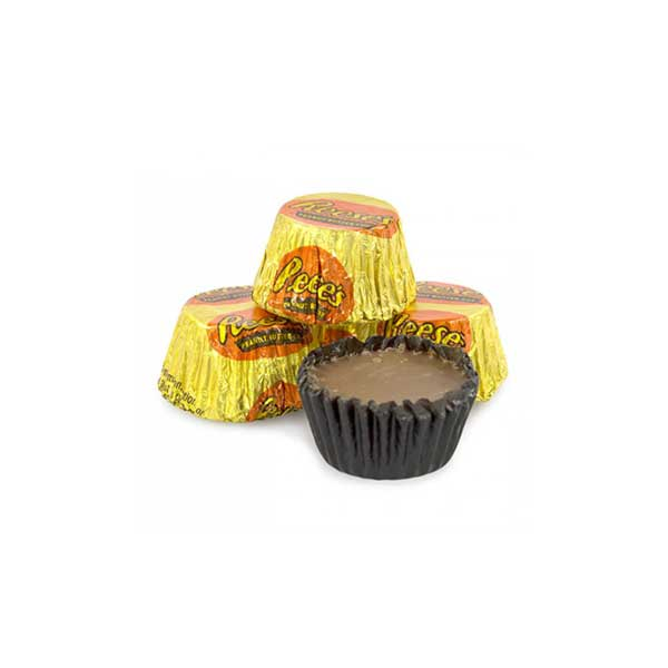 REESE'S MINIATURES SINGOLO - Jerry America