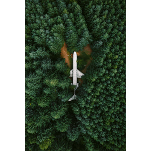 Plane in the Woods