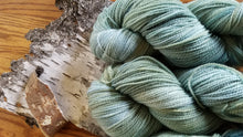 Load image into Gallery viewer, Forest, SPECIAL LISTING, Hand dyed yarn, Sport weight yarn,100 % Merino