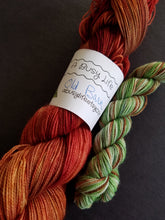 Load image into Gallery viewer, Old Barn sock set, hand dyed sock set, 80/20 Superwash Merino/Nylon, Fingering weight yarn Weight yarn