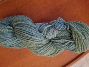 Forest, SPECIAL LISTING, Hand dyed yarn, DK  weight yarn,100 % Merino, Woolies