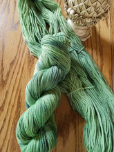 Load image into Gallery viewer, Hand dyed yarn, Spring Forest, 80/20 Non-Superwash Merino Nylon, Sport weight