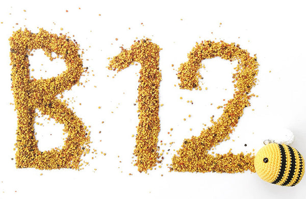Why is it important? Which foods are high in Vitamin B12?