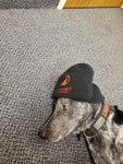 Red Summit Swag, Red Summit Beanie, Red Summit logo in red embroidered on soft knit black beanie. Shown on Red Summit mascot, our shop dog 'Summit'.