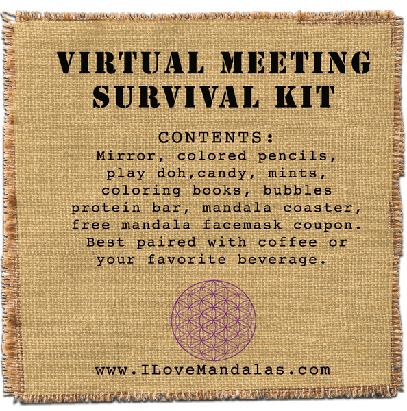 Virtual Meeting Survival Kit
