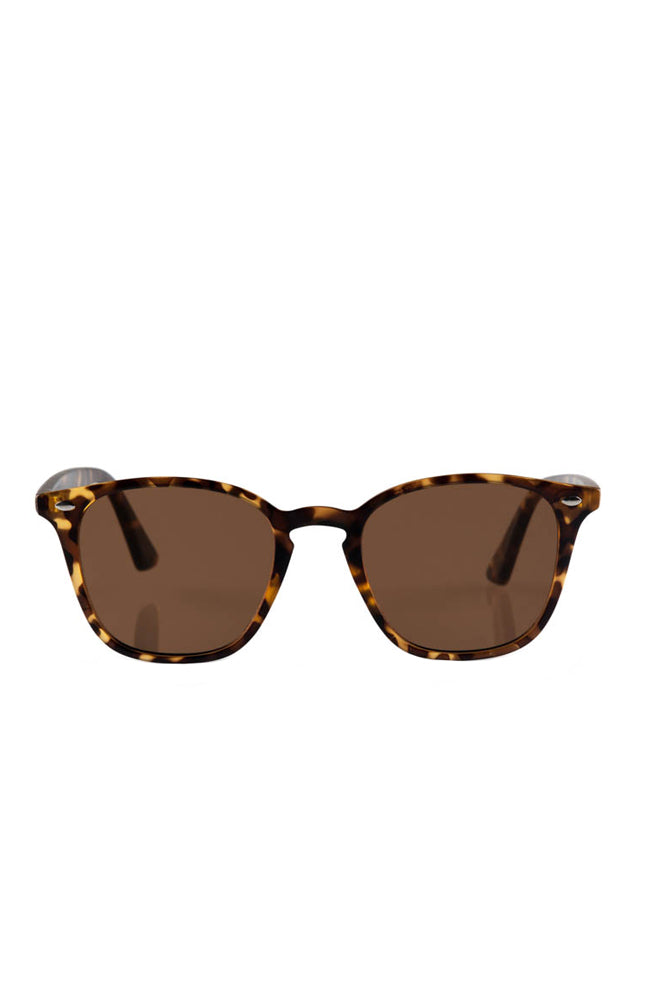 The Chelsea Sunglasses - Turtle
