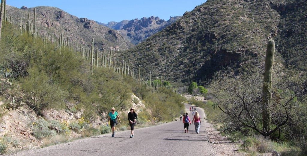 Visit the Sabino Canyon Visitor Center
