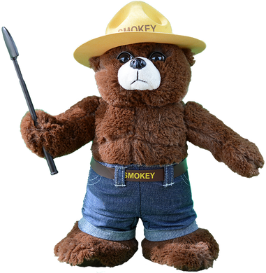 Plush: Smokey Bear 12
