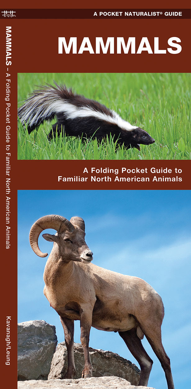Pocket Naturalist: Mammals