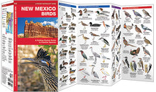 Load image into Gallery viewer, Pocket Naturalist: New Mexico Birds