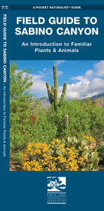 Field Guide to Sabino Canyon